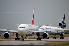 """kervan"" Turkish Airlines Cargo TC-JCI Airbus A330-243F cn/1442 @ EDDF / FRA 17-09-2016 (Nabil Molinari Photography) Tags: kervan turkish airlines cargo tcjci airbus a330243f cn1442 eddf fra 17092016"