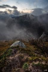 Brume (Manonlemagnion) Tags: nature paysage france vosges crête brume matin leverdusoleil sunrise lumière nikond810 1635mmf4