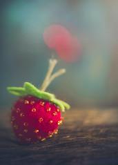 Felt strawberry (Ro Cafe) Tags: fake lensbaby mm macromondays sonya7iii twist60 macro macroconverters felt strawberry dof selectivefocus bokeh softfocus colorful