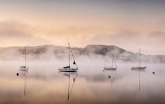 Waterhead (petebristo) Tags: lakedistrict water waterscape reflections mistymorning mist