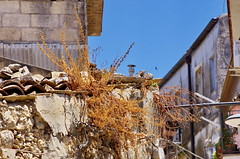 1096 Sicile Juillet 2019 - Palazzolo Acreide (paspog) Tags: épalazzolo acreide sicile sicily sicilia juli july juillet 2019