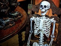 Rocking Skeleton (Bennilover) Tags: skeleton rockingchair halloween day3 countdown happy teeth smile skeletons owls books