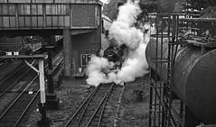 80097 ST4 Leaving Platform 4 - Mono (Gerry Hat Trick) Tags: elr eastlancsrailway standard four tank station steam bolton street smoke loco locomotive engine train blackwhite blackandwhite mono monochrome olympusepm1 sigma19mmartprime