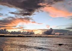SUNSET IN AUTUMN/ COUCHER DU SOLEIL (lulukiwi86) Tags: autumn fallseason googlepixel sunset water pordosol sonnenuntergang coucherdusoleil puestadelsol automne outono autunno canvasskies skies