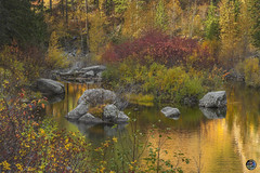 Autumn colors on the Wenatchee River 2019 (TheArtOfPhotographyByLouisRuth) Tags: autumn colors nature prophoto season nikond810 gold tranquility beautiful scenicphotography opticalexcellence sunset sun orange artofimages usriverscreekswaterfallsandlakes bestworldphotography finegold flickraward aggroup optical license pretty trees bush plant monpetitparadis goldenhour travel yourshotphotographer