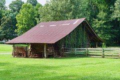 Vine Covered Barn (Richard Melton) Tags: wooden barn wagon farm historic frence camp mississippi