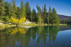 Reflections (Bernie Emmons) Tags: jaspernationalpark jasperalberta reflection mountains lake alberta yellow green natureandnothingelse