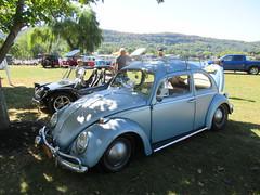 1961 Volkswagen Beetle (smaginnis11565) Tags: volkswagen vw beetle 1961beetle sedan carshow haverstraw newyork rocklandcounty 2019