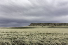 The Bluff, the Prairie and the Barbed Wire Fence (jessicalowell20) Tags: adventure barbedwirefence bluff clouds colorado geography geology grassland grasslands gray northamerica prairie ranch rangeland spring tan thewest travel white