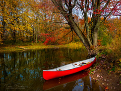 Canoeing on the Beaver River (VIEW [ + ] FINDER) Tags: canoeing canoe beaverriver greycounty ontario canada red autumn fall trees river reflection leaves olympusomdem10markiii olympusmzuiko1240mmf28pro microfourthirds