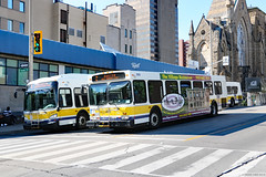 New New Flyer and old New Flyer (Can Pac Swire) Tags: ontario canada canadian hamilton bus transit public 2019aimg7160 hsr hamiltonstreetrailway 110 james street st s south xd40 d40lf