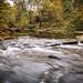 Tinker's Creek in autumn