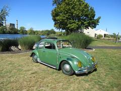 Green VW Beetle (smaginnis11565) Tags: volkswagen vwbeetle sedan carshow haverstraw newyork rocklandcounty 2019