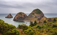 Peaceful Cove (larwbuck) Tags: landscape oregon bushes clouds cove ocean rocks seascape summer water