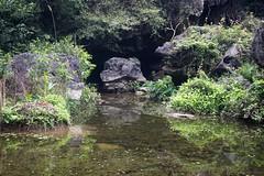 Agua (rraass70) Tags: canon d700 agua ninbinh deltadelriorojo vietnam
