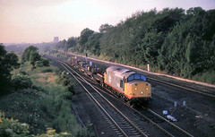 Low Fell 37516 up Alcan ingots 28th June 88 C9557 (DavidWF2009) Tags: ecml lowfell class37