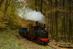 Forest freight (DoctorMP) Tags: parowóz parowozy lowa lkm 26004 białośliwie bwkd wąskotorówka kolej jesień wielkopolska polska steam trains locomotives narrow gauge railway autumn fall poland dampflok dampfloks polen schmalspurbahn forest