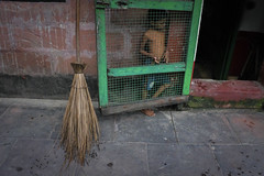 (koushiksinharoy1) Tags: streetphotography broom illusion kid riverside morning trapped emotion door hope despair
