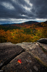 Boulder Loop Trail (MikeWeinhold) Tags: boulder loop trail white mlountain national forest kancamagus fall autumn landscape nature