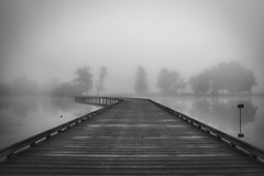 Morning Lake (@phr_photo) Tags: landscape paysage france gironde noiretblanc blackandwhite black white mist brume fog morning tree arbre lake lac passerelle autumn automne nikon 35mn