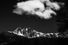 Don't say it's the end of the road (.KiLTЯo.) Tags: kiltro cl chile tierradelfuego cordilleradedarwin darwin magallanes patagonia mountain tree nature landscape clouds sky bw blackandwhite snow wind