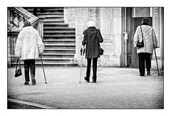 """three handbags, three crutches, three old ladies in pants <a style=""""margin-left:10px; font-size:0.8em;"""" href=""""http://www.flickr.com/photos/145402505@N06/48979298227/"""" target=""""_blank"""">@flickr</a>"""