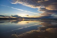Bakers Beach, Tasmania. (Steven Penton) Tags: bakers beach coast tasmania australia narauntapu national park