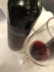 IMG_5825 (burde73) Tags: gambero gamberorosso gaja ornellaia tasting wine roma sheraton
