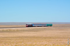 First train in the new line... (N.Batkhurel) Tags: season gobi gobidesert trains trainspotting transport passengertrain railway railfan railroad mongolia monrailpic m62um diesellocomotive dornogobi sky ngc nikon nikond5200 nikkor 24120mm