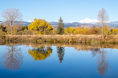 Golden Ponds - Longmont Colorado (aaronrhawkins) Tags: goldenponds longmont colorado reflection trees fall autumn yellow gold mountain snow snowcapped hike morning wafer pond still glassy aaronhawkins