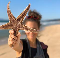 Estrelícia (LetsLetsLets) Tags: estreladomar seastar praia beach fontedatelha portugal outubro 2019