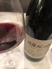 IMG_5811 (burde73) Tags: gambero gamberorosso gaja ornellaia tasting wine roma sheraton