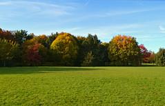 Oh, autumn (Giulia C) Tags: uk london regentspark londra parco autumn