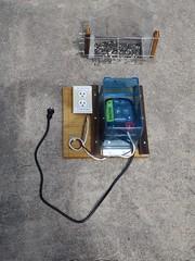 20190728_1351_105_Electrified-Bird-Feeder (EasyAim) Tags: birdfeeder electrical electrified fence squirrel proof colleyville
