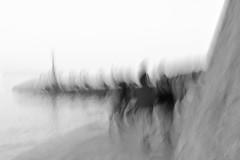 Moving to the same rhythm (Sanda_77) Tags: icm cameramovement intentionalcameramovement blur blurry abstract abstractphotography bw blackandwhite monochrome painterly