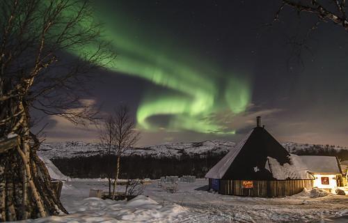 Golden Eagle Arctic Explorer scenes