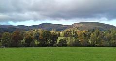 Dee Valley 241019_155434 (Leslie Platt) Tags: exposureadjusted straightened denbighshire llangollenrailway berwyn deevalley