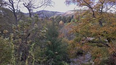 Dee Valley 241019_155403 (Leslie Platt) Tags: exposureadjusted straightened denbighshire llangollenrailway berwyn deevalley horseshoefalls