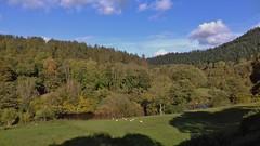 Dee Valley 241019_145243 (Leslie Platt) Tags: denbighshire llangollenrailway deevalley exposureadjusted straightened