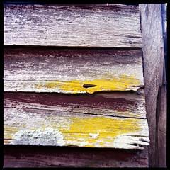 2019-10 H C R03 002 (kccornell) Tags: rayne house siding lichen hasselblad louisiana 500c 120 medium format film color kodak portra 400 6x6