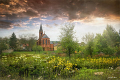 In the light (Jean-Michel Priaux) Tags: village paysage nature landscape place scharrachbergheim irmstett church chapel abbey field spring sunset light cloud sky trees flower flowers priaux architecture patrymony medieval