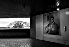 Elvis is in the building- Fuji xt10 18-55mm (ToddGraves2) Tags: