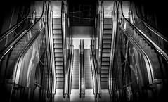 escalator down (Blende1.8) Tags: rotterdam escalator escalators rolltreppe rolltreppen symmetry symmetrie symmetrisch nopeople mono monochrome markthalle markthal markethall market architecture wideangle sel1224g sony alpha blackandwhite bw urban