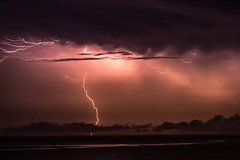 Severe Thunderstorm (Markus Branse) Tags: thunderstorm seenfromfanniebayforeshore darwin northernterritory australia seen from fannie bay foreshore northern territory tags hinzufügen nightstorm gewitter nooamah notthern austalien austral australie aussie oz thunder storm lightning blitze bolt unwetter wetter weer meteo weather wolken cloud clouds wolke outback hell nacht langzeitbelichtung nite night nuit himmel tier gras verschwommen