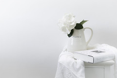 29/31: What it says on the jug... (judi may) Tags: october2019amonthin31pictures highkey hydrangea flower flowers white whiteonwhite tabletopphotography stilllife book canon5d shadesofwhite negativespace minimal minimalist minimalism simplicity simple lessismore
