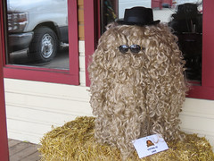 Bragg Creek, Scarecrow Days (annkelliott) Tags: alberta canada wofcalgary braggcreek scarecrowdays competition annual outsidewall scarecrow hair wig curls sunglasses window outdoor fall autumn 24october2019 canon sx60 canonsx60 powershot annkelliott anneelliott ©anneelliott2019 ©allrightsreserved