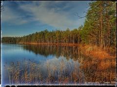 Alinen Ritajärvi (PeepeT) Tags: sastamala ritajärvinaturereserve ritajärvenluonnonsuojelualue luontokuvaus naturephotography suomenluonto syksy autumn alinenritajärvi