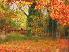 A romantic meeting in a romantic place (Dorota.S - !) Tags: park meeting autumn żelazowawola poland dorotas