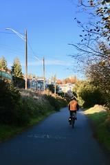 Burke Gilman Trail (Seattle Department of Transportation) Tags: sdot seattledepartmentoftransportation bike burkegilman nikiseligman