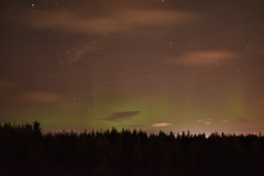 Image40 (Melissa Warren - How I Wish You Were Here.) Tags: aurora borealis northern lights kinross scotland october 2019 stars sky